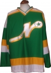 Nashville South Stars Hockey Jersey